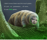 Reddit, Wow, and Time: I didn't know there was this much green...  It's just... sO... greeeeeen..... oh wow  It even feels green [Src]