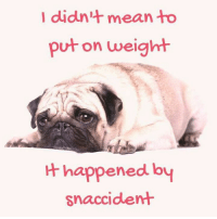 Memes, Mean, and Meaning: I didn't mean to  put on weight  happened by  snaccident A