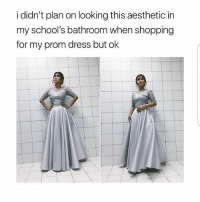 Memes, Shopping, and Aesthetic: i didn't plan on looking this aesthetic in  my school's bathroom when shopping  for my prom dress but ok Yes or no? Follow @bitchmode.s our backup🤗