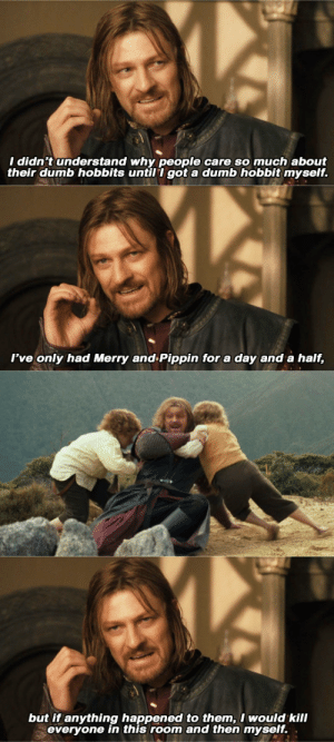Dumb, Target, and Tumblr: I didn't understand why people care so much about  their dumb hobbits untill got a dumb hobbit myself.   I've only had Merry and Pippin for a day and a half,   but if anything happened to them,I would kill  everyone in this room and then myself. . garashirs: TOLKIEN NINE-NINE [15/?]