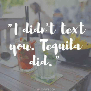 25 Margarita Memes & Tequila Quotes To Help You Celebrate National Margarita Day: I did't text  ul  did  BESTOFLIFECOM 25 Margarita Memes & Tequila Quotes To Help You Celebrate National Margarita Day