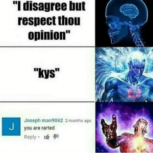 "Respect, MeIRL, and You: ""I disagree but  respect thou  opinion""  ""kys  Joseph man9062 2 months ago  you are rarted  Reply Meirl"