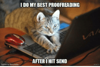 Memes, Best, and Captioned: I DO MY BEST PROOFREADING  AFTER I HIT SEND  Caption by Kittyworks Do I get a do-over?