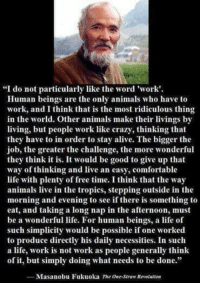 """Alive, Animals, and Comfortable: """"I do not particularly like the word 'work'.  Human beings are the only animals who have to  work, and I think that is the most ridiculous thing  in the world. Other animals make their livings by  living, but people work like crazy, thinking that  they have to in order to stay alive. The bigger the  job, the greater the challenge, the more wonderful  they think it is. It would be good to give up that  way of thinking and live an easy, comfortable  life with plenty of free time. I think that the way  animals live in the tropics, stepping outside in the  morning and evening to see if there is something to  eat, and taking a long nap in the afternoon, must  be a wonderful life. For human beings, a life of  such simplicity would be possible if one worked  to produce directly his daily necessities. In such  a life, work is not work as people generally think  of it, but simply doing what needs to be done.""""  Masanobu Fukuoka The One-Straw Renolution Thoughts for a Saturday. What do you think?  """"I do not particularly like the word 'work.' Human beings are the only animals who have to work, and I think that is the most ridiculous thing in the world. Other animals make their livings by living, but people work like crazy, thinking that they have to in order to stay alive. The bigger the job, the greater the challenge, the more wonderful they think it is. It would be good to give up that way of thinking and live an easy, comfortable life with plenty of free time. I think that the way animals live in the tropics, stepping outside in the morning and evening to see if there is something to eat, and taking a long nap in the afternoon, must be a wonderful life. For human beings, a life of such simplicity would be possible if one worked to produce directly his daily necessities. In such a life, work is not work as people generally think of it, but simply doing what needs to be done."""" ― Masanobu Fukuoka, The One-Straw Revolution  Pantheism: Everything """