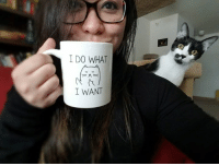 Memes, 🤖, and Photobombing: I DO WHAT  I WANT Best. Photobomb. Ever.   The mug is at: amzn.to/2nRr3ih