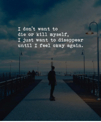 ~S.R~: I don' t want to  die or kill myself,  I just want to disappear  until I feel okay again. ~S.R~