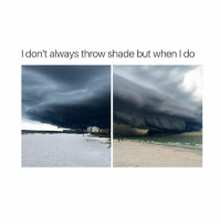 Memes, Shade, and Throwing Shade: I don't always throw shade but when I do