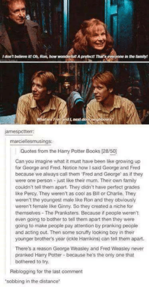 """I never realised this beforeomg-humor.tumblr.com: I don't believe it! Oh, Ron, how wondertul! A prefect! Thar's everyone in the family!  What are Fred and I, next-door neighbours?  jamespctterr:  marciellesmusings:  Quotes from the Hary Potter Books (28/50)  Can you imagine what it must have been like growing up  for George and Fred. Notice how I said George and Fred  because we always call them 'Fred and George' as if they  were one person - just like their mum. Their own family  couldn't tell them apart. They didn't have perfect grades  like Percy. They weren't as cool as Bill or Charlie. They  weren't the youngest male like Ron and they obviously  weren't female like Ginny. So they created a niche for  themselves - The Pranksters. Because if people weren't  even going to bother to tell them apart then they were  going to make people pay attention by pranking people  and acting out. Then some scruffy looking boy in their  younger brother's year (ickle Harrikins) can tell them apart.  There's a reason George Weasley and Fred Weasley never  pranked Harry Potter - because he's the only one that  bothered to try.  Reblogging for the last comment  """"sobbing in the distance I never realised this beforeomg-humor.tumblr.com"""
