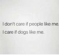 Dogs, Humans of Tumblr, and Like: I don't care if people like me.  I care if dogs like me.