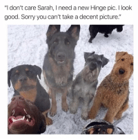 "Sorry, Good, and Girl Memes: ""I don't care Sarah, I need a new Hinge pic. I look  good. Sorry you can't take a decent picture."" Get it together Sarah"