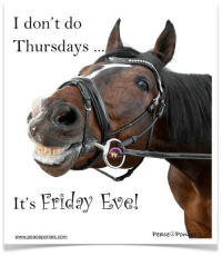 Friday, It's Friday, and Memes: I don't do  Thursdays  It's Friday Eve!  www.peace ponies. Com  Peace Po Good Morning ~ Happy Friday Eve! The Peace Ponies, Domino & Puzzle