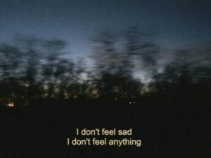 Feel Sad: I don't feel sad  I don't feel anything