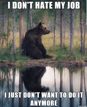 Imgur, Only One, and Advice Animals: I DON'T HATE MY JOB  I JUST DON'T WANT TO DO IT  ANYMORE  made on imgur I can't be the only one...
