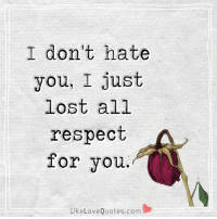 I don't hate you, I just lost all respect for you.: I don't hate  you, I just  lost all  respect  for you.  Like Love Quotes.com I don't hate you, I just lost all respect for you.