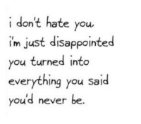 I Dont Hate You: i don't hate you,  im just disappointed  ou turned into  everything you said  you'd never be.