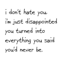 I Dont Hate You: i don't hate you  im just disappointed  you turned into  everything you said  youd never be.