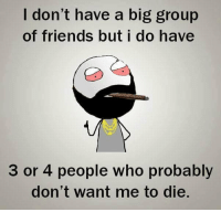 Be Like, Friends, and Meme: I don't have a big group  of friends but i do have  3 or 4 people who probabl  don't want me to die. Twitter: BLB247 Snapchat : BELIKEBRO.COM belikebro sarcasm meme Follow @be.like.bro
