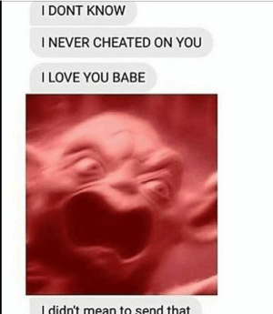Dank, Love, and Memes: I DONT KNOW  I NEVER CHEATED ON YOU  I LOVE YOU BABE  I didn't mean to send that meirl by icanpretendtoo MORE MEMES