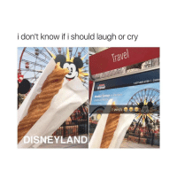 me lmao: i don't know if i should laugh or cry  Travel  LJI  1877-849-2730 Costc  travel  Member Savings lacatons  Ousesand Rental  wish  23  DISNEYLAND me lmao