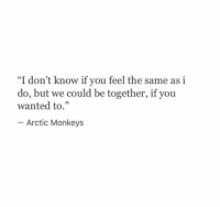 """Arctic Monkeys, Wanted, and Monkeys: """"I don't know if you feel the same as i  do, but we could be together, if you  wanted to.""""  95  Arctic Monkeys"""