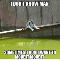 Move, Moving, and I Dont Know: I DON'T KNOW MAN  SOMETIMES, I DONT WANT TO  MOVE IT MOVE IT One of those days.
