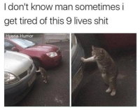 Shit, Hyena, and Man: I don't know man sometimes i  get tired of this 9 lives shit  Hyena Humor <p>That's Fair</p>