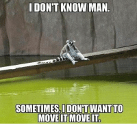 Funny, I Dont Know, and Move It: I DON'T KNOW MAN  SOMETIMES, IDONTT WANT TO  MOVE IT MOVE IT Same