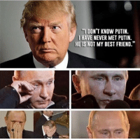 """Best Friend, Friends, and Memes: """"I DONT KNOW PUTIN.  HAVE NEVER MET PUTIN.  HE IS NOT MY BEST FRIEND."""" We all shed tears for Putin..."""