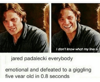 i'm watching gilmore girls and dean(jared padalecki) is so young and tbh his character kinda annoys me😂~gracie jaredpadalecki spn: I don't know what my lino ls.  jared padalecki everybody  emotional and defeated to a giggling  five vear old in 0.8 seconds i'm watching gilmore girls and dean(jared padalecki) is so young and tbh his character kinda annoys me😂~gracie jaredpadalecki spn
