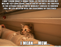 Feline existentialism.: I DON'T KNOW WHAT'S DOWN THERE-IS THE ABYSS BELOW ME?  WILL MY FEET EVER AGAIN TOUCHEARTH? OR WILL I BE TRAPPED  IN THE STYGIAN VOID BETWEEN WORLDS? CURSED TO FOREVER  FALL, MY LIFE DILATED INTO THIS BLACKHOLE OF EXISTENCE.  MEAN MEW  made on imgur Feline existentialism.