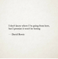 David Bowie, Bowie, and I Dont Know: I don't know where I 'm going from here,  but I promise it won't be boring  David Bowie