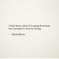 David Bowie, Bowie, and I Dont Know: I don't know where I 'm going from here,  but I promise it won't be boring  -David Bowie