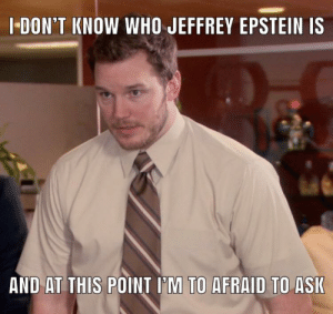 Seriously: I-DON'T KNOW WHO JEFFREY EPSTEIN IS  AND AT THIS POINT I'M TO AFRAID TO ASK Seriously