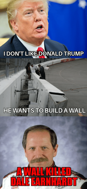 Donald Trump, Reddit, and Trump: I DON'T LIKE DONALD TRUMP  HEWANTS TO BUILD A WALL  AWALL KILLED  DALE EARNHARDT  EING Raise hell n praise dale