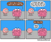 Memes, Brain, and Okay: I don't like it, Brain.  I don't like it ONE BIT  I trust you, gut.  Just tell me WHY so  I can try to fix it!  02016 The Aukward Yeti  theAukardYeticom  Not. One. Bit.  Okay  then.  theAwkwardYeti.com gut instincts