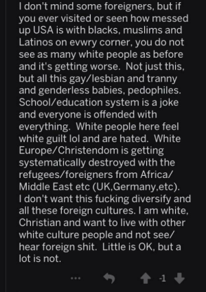 Insanepeoplereddit manages to insult just about everybody: I don't mind some foreigners, but if  you ever visited or seen how messed  up USA is with blacks, muslims and  Latinos on evwry corner, you do not  see as many white people as before  and it's getting worse. Not just this  but all this gay/lesbian and tranny  and genderless babies, pedophiles.  School/education system is a joke  and everyone is offended with  everything. White people here feel  white guilt lol and are hated. White  Europe/Christendom is getting  systematically destroyed with the  refugees/foreigners from Africa/  Middle East etc (UK,Germany,etc)  I don't want this fucking diversify and  all these foreign cultures. I am white  Christian and want to live with other  white culture people and not see/  hear foreign shit. Little is OK, but a  lot is not  -1 Insanepeoplereddit manages to insult just about everybody