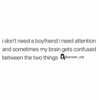 Confused, Funny, and Memes: i don't need a boyfriend i need attention  and sometimes my brain gets confused  between the two things Resarasm only SarcasmOnly