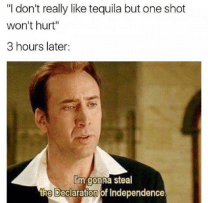 """When youve had too many. by wadeybb MORE MEMES: """"I don't really like tequila but one shot  won't hurt""""  3 hours later:  im gonna steal  the Deciaration of Independence When youve had too many. by wadeybb MORE MEMES"""