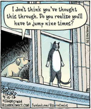 laughoutloud-club:  It Won't Be That Easy, Cat: I don't think you've thought  this through. Do you realize yoill  have to jump nine times?  pa  2A  0-  9:1512  BIZARROCoMICS.COM Face book.com/BizarroComics laughoutloud-club:  It Won't Be That Easy, Cat