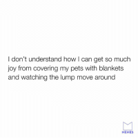Dank, Love, and Memes: I don't understand how I can get so much  joy from covering my pets with blankets  and watching the lump move around  MEMES We all love it.