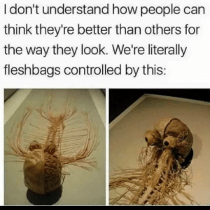 Dank, Memes, and Target: I don't understand how people can  think they're better than others for  the way they look. We're literally  fleshbags controlled by this: Solid point tho by despisesunrise MORE MEMES