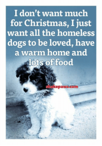 Christmas, Dogs, and Food: I don't want much  for Christmas, I just  want all the homeless  dogs to be loved, have  a warm home and  lots of food  hakepaws.com ❤️❤️❤️