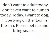 Memes, Today, and Lying: I don't want to adult today.  I don't even want to human  today. Today, I want to dog.  I'll be lying on the floor in  the sun. Please pet me and  bring snacks. Yess!