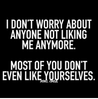 Memes, 🤖, and Goth: I DONT WORRY ABOUT  ANYONE NOT LIKING  ME ANYMORE  MOST OF YOU DONT  EVEN LIKE,YOURSELVES  UG  ON  N' LV  BI  AKE OE  IR DS  YLO U  RT  RO  YY  ONN F  WEA OK  T E TI  SL  ON  ON  DA  ME TRUE. relatable rebel rebelcircus quotes lol f4f funny humor memes rebelcircusquotes goth love inspo goals circus