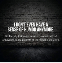 annoyance: I DONTEVEN HAVE A  SENSE OF HUMOR ANYMORE  It's literally just sarcasm and a constant edge of  annoyance by the majority of the human population.