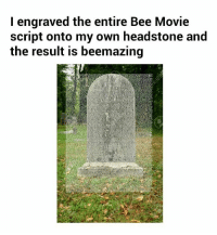 Why do I continue to make memes?: I engraved the entire Bee Movie  script onto my own headstone and  the result is beemazing Why do I continue to make memes?