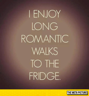 Tumblr, Blog, and Http: I ENJOY  LONG  ROMANTIC  WALKS  TO THE  FRIDGE  THE META PICTURE srsfunny:I Just Enjoy Them
