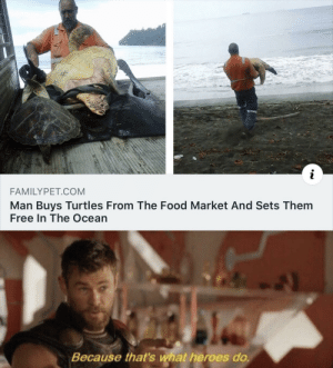 Saving turtles: i  FAMILYPET.COM  Man Buys Turtles From The Food Market And Sets Them  Free In The Ocean  Because that's what heroes do. Saving turtles
