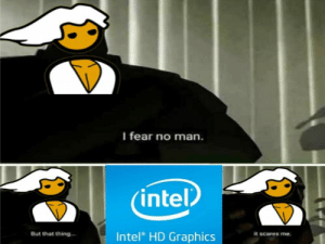 Intel, Fear, and Been: I fear no man.  intel  Intel HD Graphics  But that thing  it scares me Oh boy. And I've been using integrared graphics since day one.