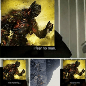 Fall, Meme, and Reddit: I fear no man.  M A Dark souls meme I decided to make after dying to fall damage after a no death run. I managed to get to the lord of cinder, then fell down on a part of the bridge. There was a huge semisphere missing on the left side... I feel like a retard.
